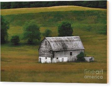 Old Barn Near Buckhannon Wood Print by Dan Friend