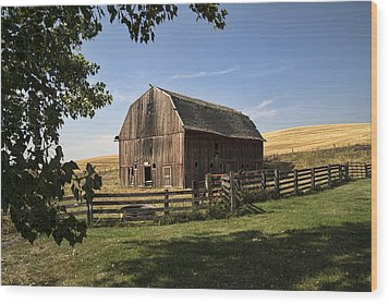 Old Barn On The Palouse Wood Print