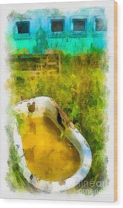 Old Bathtub Near Painted Barn Wood Print by Amy Cicconi