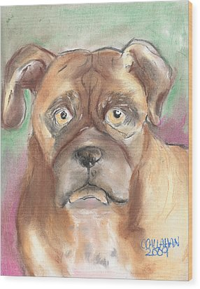 Old Boxer Wood Print by Christine Callahan