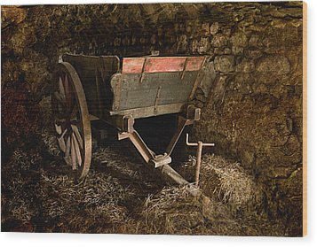 Old Cart Wood Print by Liz  Alderdice
