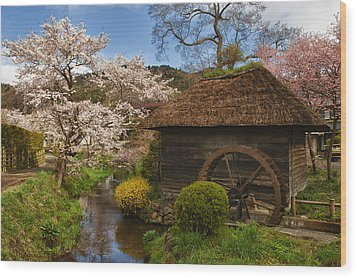 Old Cherry Blossom Water Mill Wood Print by Sebastian Musial