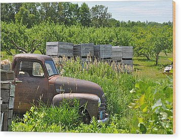 Old Chevy Pickup In Orchard Wood Print by Jeremy Evensen