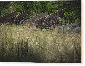 Wood Print featuring the photograph Old Cotton Bale Wagons by Allen Biedrzycki