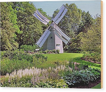 Old East Windmill  Wood Print by Janice Drew
