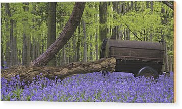 Old Farm Machinery In Vibrant Bluebell  Spring Forest Landscape Wood Print by Matthew Gibson