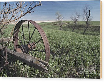 Old Farm Wagon Wood Print