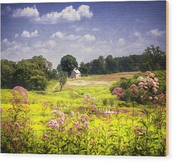 Old Farmhouse At Longwood Gardens Wood Print by Vicki Jauron