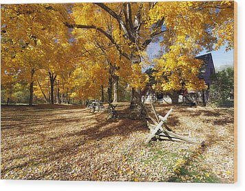 Old Farmroad With Autumn Colors Wood Print by George Oze