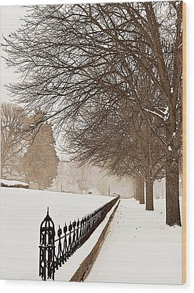 Old Fashioned Winter Wood Print by Chris Berry