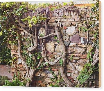 Old Garden Wall Wood Print by Lutz Baar
