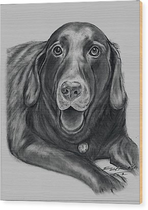 'old Gus' Wood Print by Barb Baker