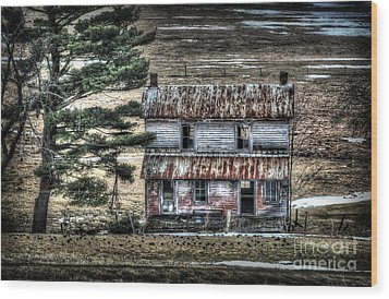 Old Home Place With Birds In Front Yard Wood Print by Dan Friend
