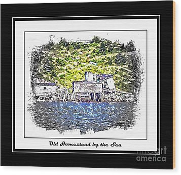 Old Homestead By The Sea Wood Print by Barbara Griffin