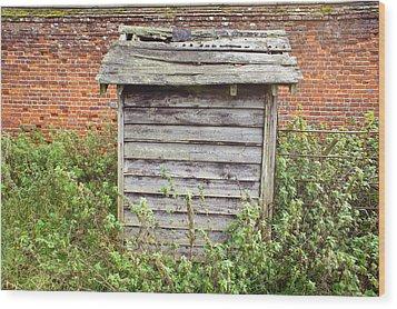Old Hut Wood Print by Tom Gowanlock