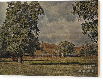 Old John Bradgate Park Leicestershire Wood Print by John Edwards
