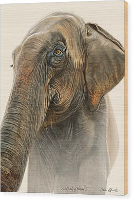 Old Lady Of Nepal 2 Wood Print by Aaron Blaise