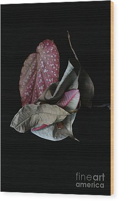 Old Leaves. Wood Print by Tanya Polevaya