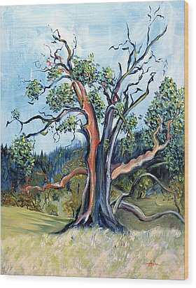 Old Madrone Tree In November  Wood Print