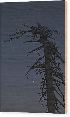 Old Man And Moon Wood Print