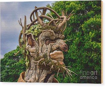Old Man Winter Wood Print
