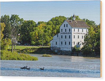 Old Mill On Grand River In Caledonia In Ontario Wood Print
