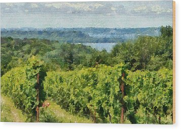 Old Mission Peninsula Vineyard Wood Print by Michelle Calkins