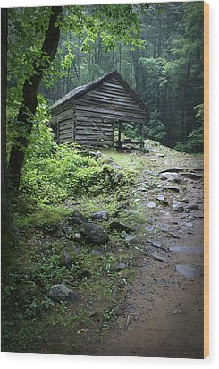 Old Mountain Cabin Wood Print