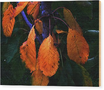 Old Orange Leaves Wood Print