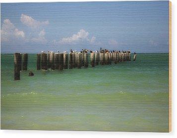 Old Pier  Naples Bay Wood Print by Carol Kinkead