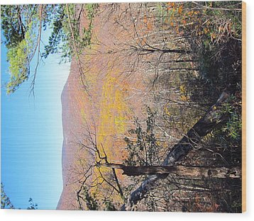 Old Rag Hiking Trail - 121215 Wood Print by DC Photographer