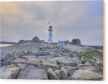 Old Scituate Light Wood Print by Dan Myers