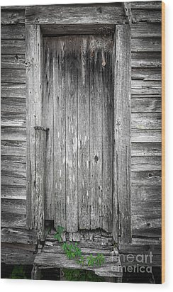 Wood Print featuring the photograph Old Shed Door by Marion Johnson