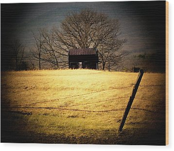 Old Shed Wood Print by Michael L Kimble