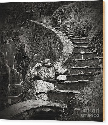 Old Stone Stairway Wood Print by Charmian Vistaunet