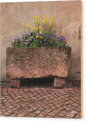 Old Stone Trough And Flowers In Alsace France Wood Print by Greg Matchick