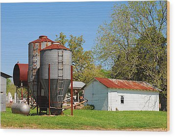 Old Texas Farm Wood Print by Connie Fox