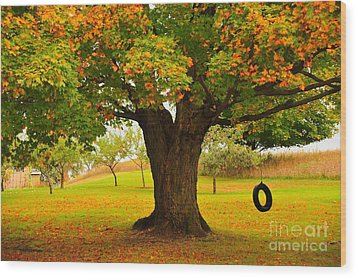 Old Tire Swing Wood Print by Terri Gostola