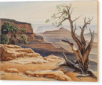 Old Tree At The Canyon Wood Print by Paul Krapf