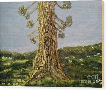 Old Tree In Spring Light Wood Print