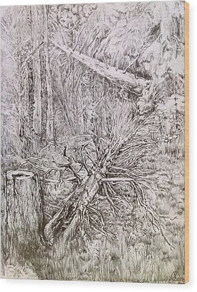 Old Tree Wood Print