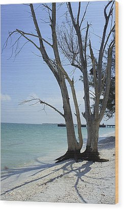 Wood Print featuring the photograph Old Tree by Laurie Perry