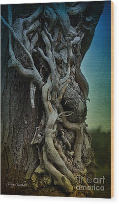 Old Vine Wood Print by Mary Machare