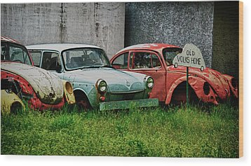 Old Volks Home Wood Print