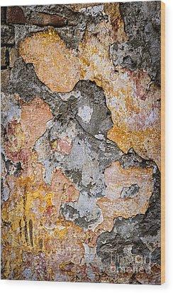 Old Wall Abstract Wood Print by Elena Elisseeva