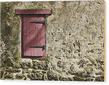 Old Wall And Door Wood Print by Olivier Le Queinec