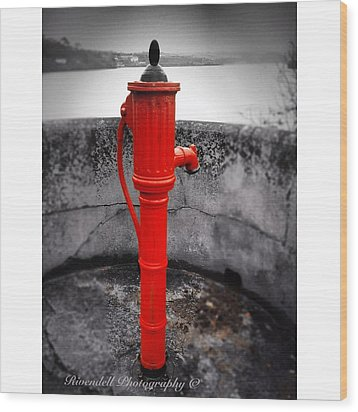 Old Water Pump Kinsale Wood Print by Maeve O Connell