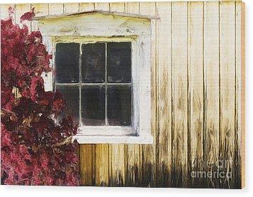 Old White Window Wood Print by Martin Dzurjanik