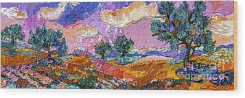 Olive Grooves Provence Panoramic Landscape Wood Print