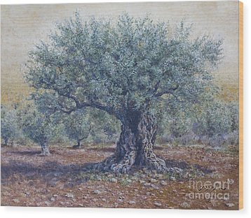 Olive In The Summer  Wood Print by Miki Karni